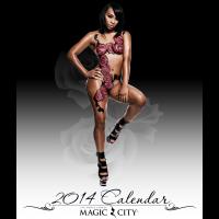 Calendar cover for store